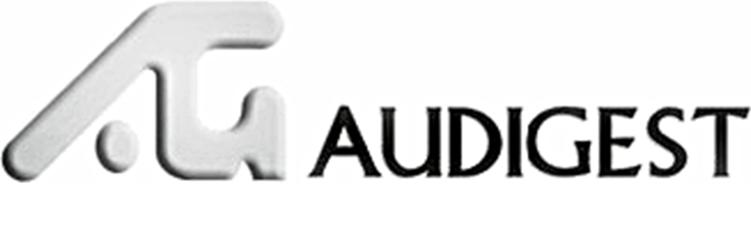 Auditoría y Gestión, Consultores, S.A.